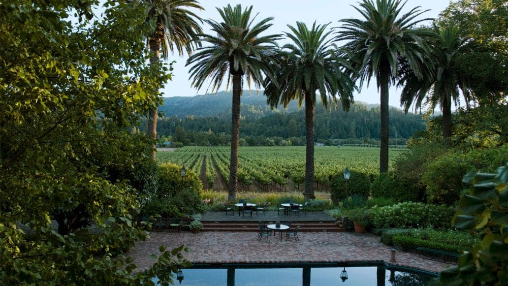 474Stony Hill Vineyard