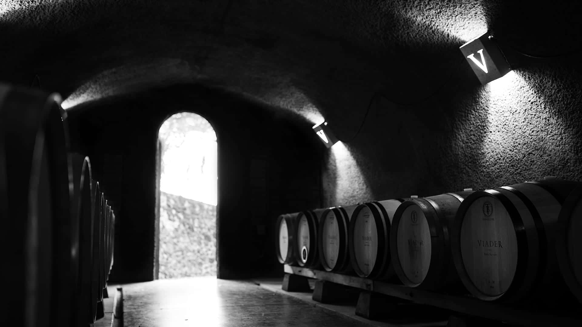 VIADER Vineyards and Winery