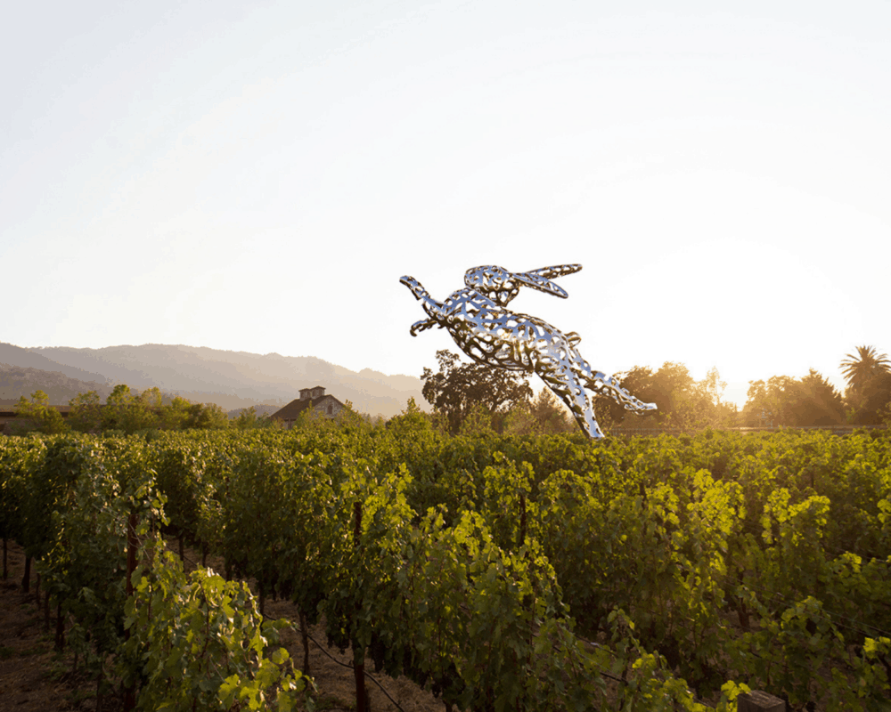 What Type of Wine Country Traveler Are You?