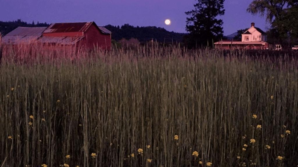 stars and barn