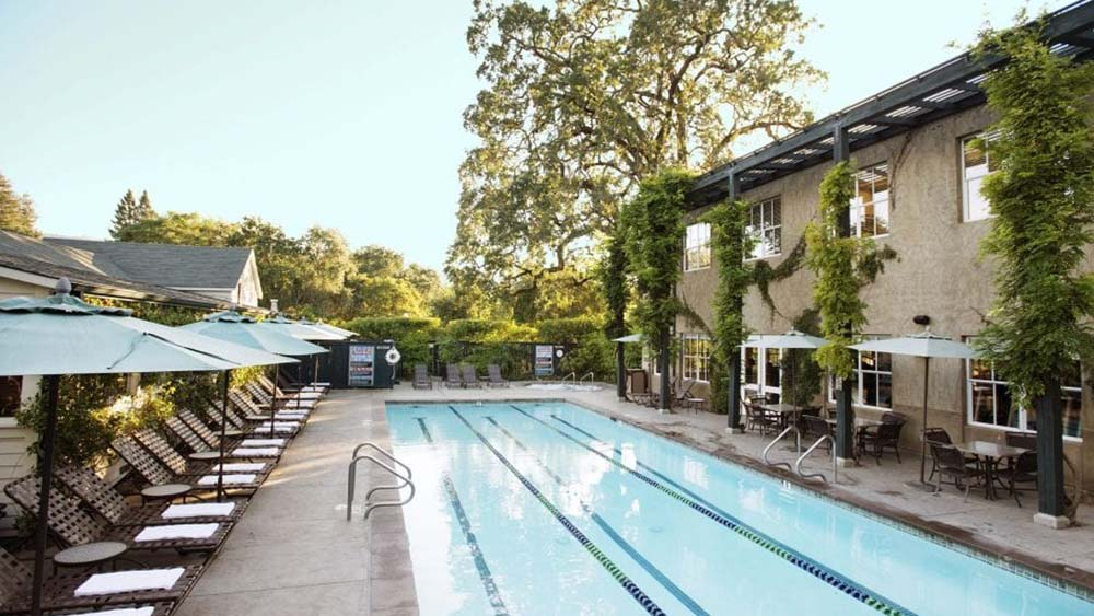 A Local's Guide to St. Helena